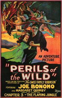 Perils of the Wild - 43 x 62 Movie Poster - Bus Shelter Style A