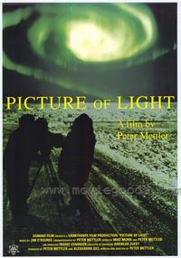 Picture of Light - 43 x 62 Movie Poster - Bus Shelter Style A
