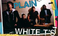 Plain White T's - Music Poster - 22 x 34 - Style A