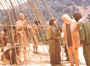 Planet of the Apes - 8 x 10 Color Photo #1