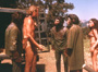 Planet of the Apes - 8 x 10 Color Photo #2