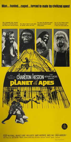 Planet of the Apes - 20 x 40 Movie Poster - Style A