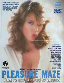Pleasure Maze - 11 x 17 Movie Poster - Style A