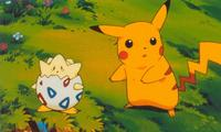 Pokemon: The First Movie - 8 x 10 Color Photo #7