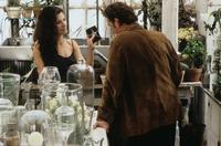 Practical Magic - 8 x 10 Color Photo #17