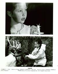 Prancer - 8 x 10 B&W Photo #3