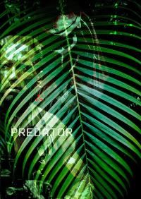 Predator - 27 x 40 Movie Poster - Style C
