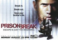 Prison Break (TV) - 43 x 62 TV Poster - Style B