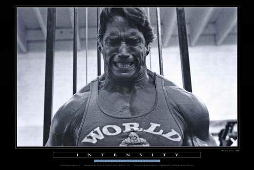 arnold schwarzenegger bodybuilding posters rynakimley