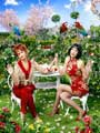 Pushing Daisies (TV) - 11 x 17 TV Poster - Style H
