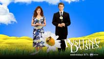 Pushing Daisies (TV) - 11 x 17 TV Poster - Style N