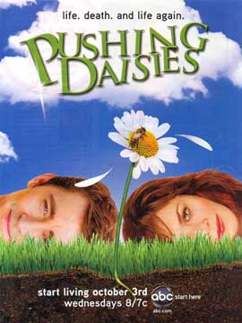 Pushing Daisies (TV) - 11 x 17 TV Poster - Style T