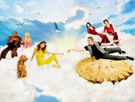 Pushing Daisies (TV) - 11 x 14 TV Poster - Style A