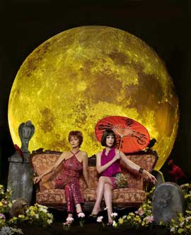Pushing Daisies (TV) - 11 x 17 TV Poster - Style K
