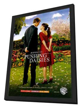 Pushing Daisies (TV) - 11 x 17 TV Poster - Argentinian Style A - in Deluxe Wood Frame