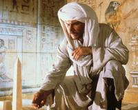 Raiders of the Lost Ark - 8 x 10 Color Photo #4
