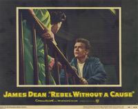Rebel without a Cause - 11 x 14 Movie Poster - Style F