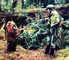 Return of the Jedi - 8 x 10 Color Photo #81