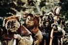 Return of the Jedi - 8 x 10 Color Photo #112
