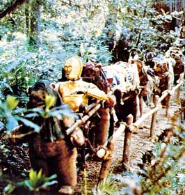 Return of the Jedi - 8 x 10 Color Photo #2