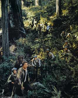 Return of the Jedi - 8 x 10 Color Photo #44