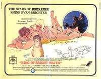 Ring of Bright Water - 11 x 14 Movie Poster - Style A