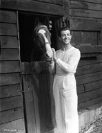 Robert Taylor - Robert Taylor posed with Horse
