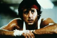 Rocky 2 - 8 x 10 Color Photo #2