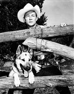 Roy Rogers Collection - Roy Rogers Behind Logs with a Dog