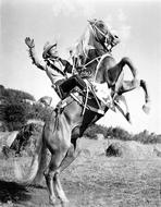 Roy Rogers Collection - Roy Rogers Posed and Rearing a Horse