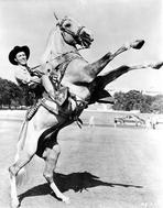Roy Rogers Collection - Roy Rogers Rides a Rearing Horse