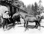 Roy Rogers Collection - Roy Rogers Carrying Hay