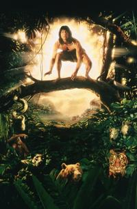 Rudyard Kipling's The Jungle Book - 8 x 10 Color Photo #4