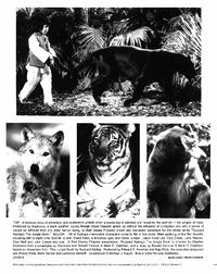 Rudyard Kipling's The Jungle Book - 8 x 10 B&W Photo #1