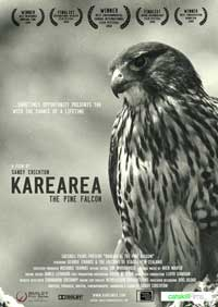 Karearea: The Pine Falcon - 11 x 17 Movie Poster - Style A
