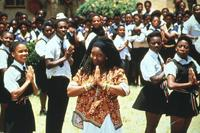 Sarafina! - 8 x 10 Color Photo #3