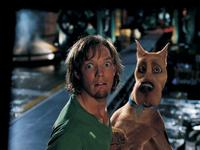 Scooby-Doo - 8 x 10 Color Photo #31