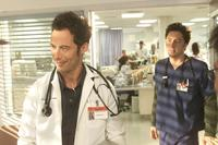 Scrubs (TV) - 8 x 10 Color Photo #054
