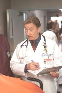 Scrubs (TV) - 8 x 10 Color Photo #059