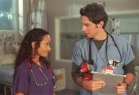 Scrubs (TV) - 8 x 10 Color Photo #071
