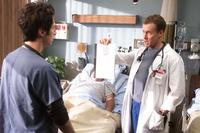 Scrubs (TV) - 8 x 10 Color Photo #079