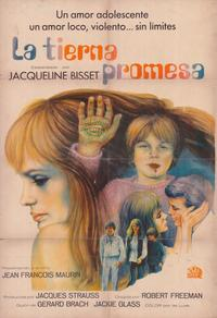 Secret Ceremony - 27 x 40 Movie Poster - Spanish Style A