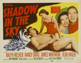 Shadow in the Sky - 22 x 28 Movie Poster - Half Sheet Style A