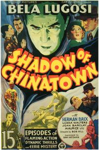 Shadow of Chinatown - 43 x 62 Movie Poster - Bus Shelter Style A