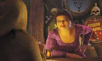 Shrek 2 - 8 x 10 Color Photo #9