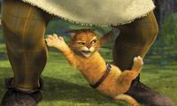 Shrek 2 - 8 x 10 Color Photo #17