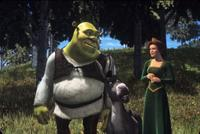 Shrek - 8 x 10 Color Photo #14