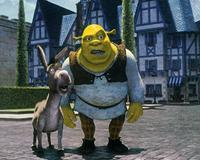 Shrek - 8 x 10 Color Photo #15