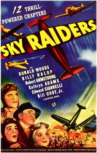 Sky Raiders - 43 x 62 Movie Poster - Bus Shelter Style A