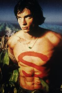 Smallville (TV) - 8 x 10 Color Photo #006